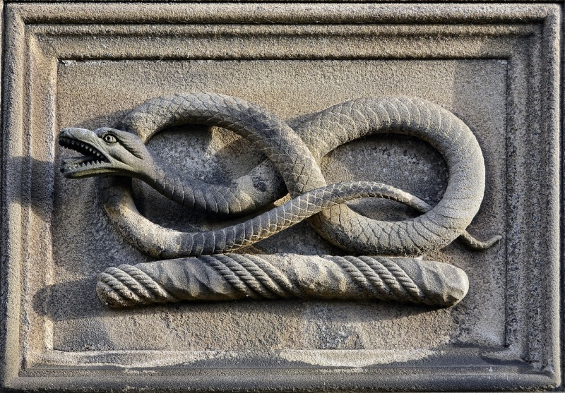 snake-3159050_1280